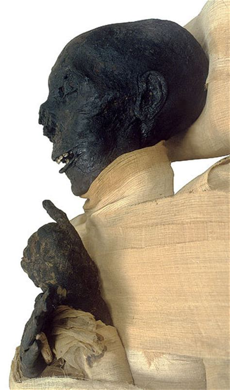 The Royal Mummies and portraits