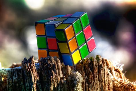 Rubik's Cube on the remains of the tree wallpapers and